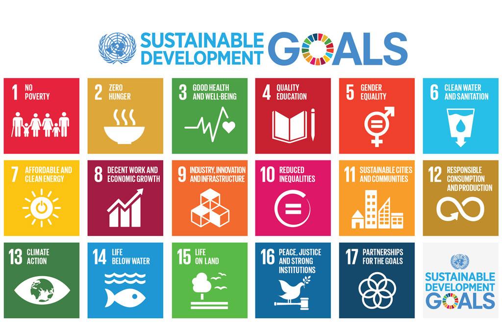 Goals WSC