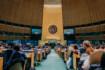 New York Young UN 2022